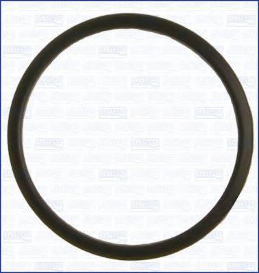 Прокладка, термостат AJUSA 00520000